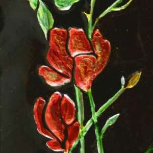 Red-Roses-2
